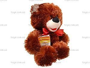 Плюшевый медвежонок «Солодунчик», 10.02.00, купить