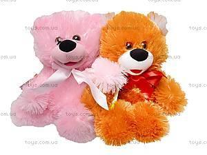Плюшевый медвежонок «Солодунчик», 10.02.00, фото