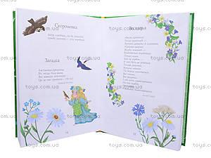 Детская книга «От весны до зимы», Ч900017У, фото