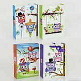 Подарочный пакет 3D «Совы», 4 варианта, 3D01467