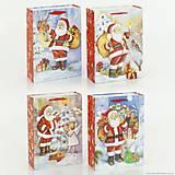 Подарочный пакет «Рождественское чудо», 4 вида, 01538, фото