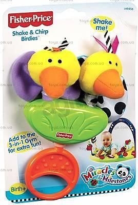 Погремушки-прорезыватели Fisher-Price, K3151, игрушки