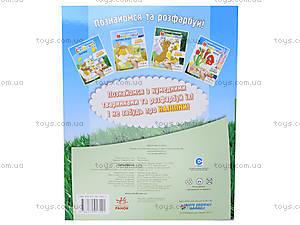 Детская раскраска с наклейками «Домашние животные», К161008У, купить