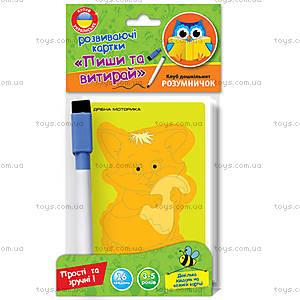 Развивающие карточки «Пиши и вытирай», VT1305-01, игрушки