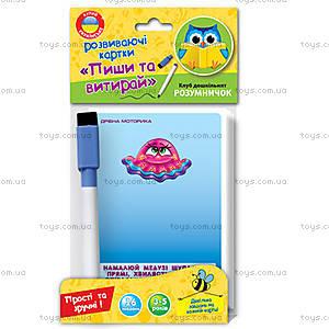 Развивающие карточки «Пиши и вытирай», VT1305-01, toys