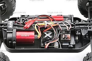 Радиоуправляемая машинка Багги Tanto Brushless, зеленый, E10XBLg, цена