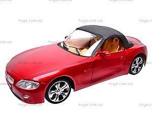 Радиоуправляемое авто Challenger, G253-5, магазин игрушек