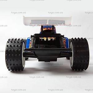 Радиоуправляемый автомобиль Attack Champ, XQXS24-1AAA, купить