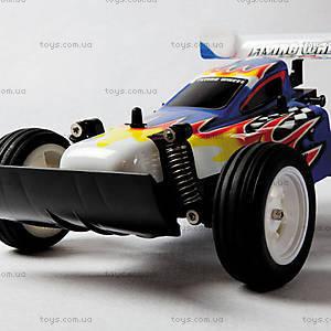 Радиоуправляемый автомобиль Attack Champ, XQXS24-1AAA, фото