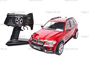 Радиоуправляемый автомобиль BMW X5, 910