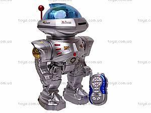 Радиоуправляемый музыкальный робот, 28072