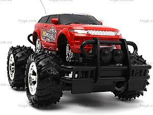 Радиоуправляемый джип для детей Storm, 689-309, toys