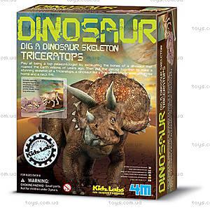 Раскопки динозавра Трицератопс, 00-03228