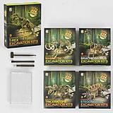 Раскопки динозавров 5 видов (инструменты, плита со скелетом), 501502503504505, фото