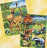 Раскраска по номерам акрилом «Лесные животные», 0216-KSG