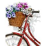 Раскраска по номерам «Цветочная прогулка», КНО2022, фото