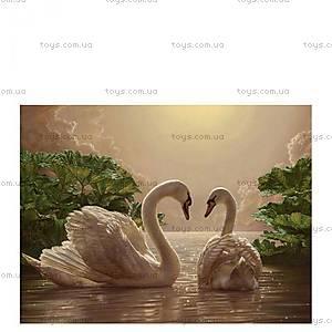 Раскраска по номерам «Пара лебедей», КН301