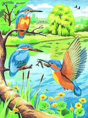 Раскраска по номерам карандашами «Зимородки», 0045-KSG
