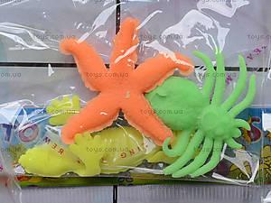 Морские растушки на планшете, PR615, фото