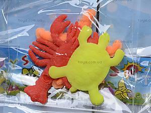 Морские растушки на планшете, PR615, цена