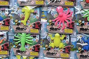 Морские растушки с рыбками и жабками, PR514, фото
