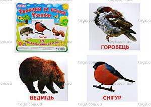 Раздаточные карточки «Животные и птицы Украины», 1020-113107008У