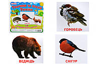 Раздаточные карточки «Животные и птицы Украины», 1020-113107008У, отзывы