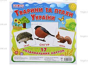 Раздаточные карточки «Животные и птицы Украины», 1020-113107008У, цена