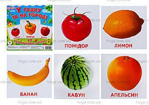 Раздаточные карточки «В саду и на огороде», 1017-113107003У