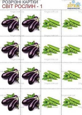 Разрезные карточки «Овощи», 68941