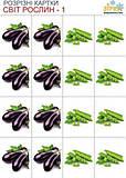 Разрезные карточки «Овощи», 68941, фото