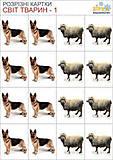 Разрезные картинки «В мире животных», 68937, фото