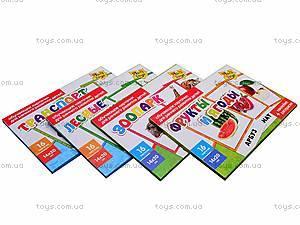 Развивающие карточки для детей, VT5700-01..08, цена