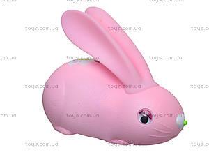 Развивающий интерактивный кролик, DB4883A, фото