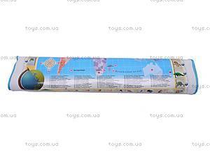 Развивающий плакат «Галопом по Европам», SR666B, купить