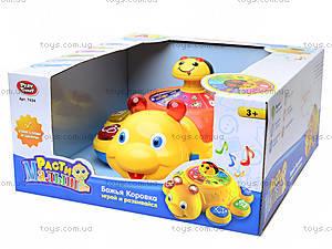 Детская развивающая игрушка «Божья коровка», 7454, цена