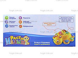 Детская развивающая игрушка «Божья коровка», 7454, toys.com.ua