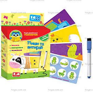 Развивающая игра «Пиши и вытирай» с маркером, VT1305-02