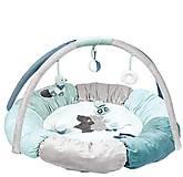 Развивающий коврик с дугами и подушками «Джек, Юлий и Нестор», 843270, фото