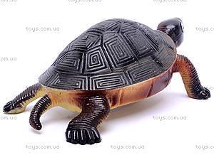 Резиновая черепаха с пищалкой, H9913W, фото