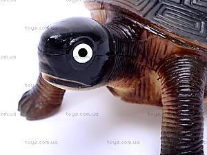 Резиновая черепаха с пищалкой, H9913W, отзывы