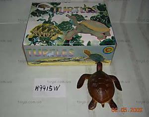 Резиновая игрушка «Черепаха», H9915W