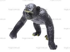 Резиновые игрушки «Дикие животные», HB981020-1, купить