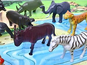 Резиновые игрушки «Дикие животные», HB981020-1, toys.com.ua