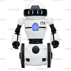Игрушечный робот Balancing Robot, 0820