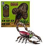 """Игрушка на радиоуправлении """"Скорпион""""черный RUICHENG (8902), 8902, фото"""