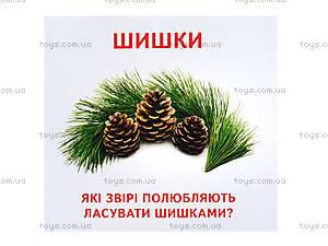 Раздаточные карточки «Съедобное и несъедобное», 1069-1, купить