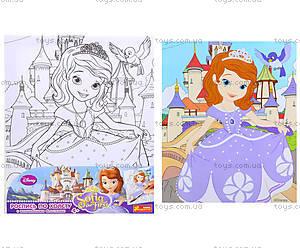 Детская раскраска по номерам «Принцесса София», 4004-22