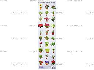 Разрезной материал «Комнатные растения», 2986, купить