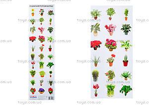 Разрезной материал «Комнатные растения», 2986